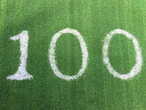 Number one hundred 100 on green grass Stock Photography