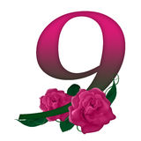 Number 9 pink floral. Pink rose decorated number 9 colorful and Royalty Free Stock Photo