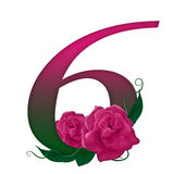 Number 6 pink floral. Pink rose decorated number 6 colorful and Stock Photos