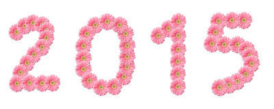 Number 2015 pink  flowers Stock Photography