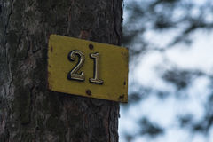 Number 21. Plate number 21 is attached to a tree Stock Photos