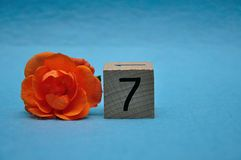 Number seven with an orange rose stock images