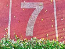 Number seven was painted with white color on sports ground. Number seven was painted with white color on sports ground, decorated with green leaves Stock Photography