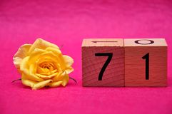 Number seventy one with a yellow rose. On a pink background stock photos