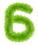 Number Six 6 made of green grass. Stock Photo