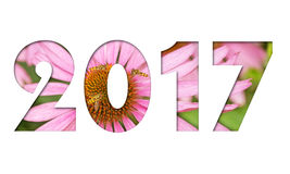 2017 number from summer pink flowers photo on white background f. Or calendar, flyer, poster, postcard etc. Summer colors Royalty Free Stock Photo