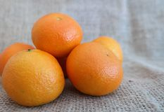 A number of tangerins. With jute background Royalty Free Stock Images