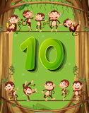 Number ten with 10 monkeys on the tree Stock Images