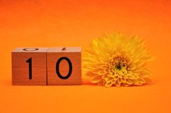 Number ten with a yellow daisy. On an orange background stock images