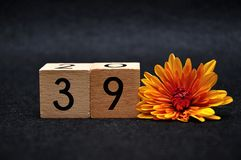 Number thirty nine with an orange daisy. On a black background stock photos