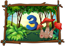 Number three with 3 mushrooms in the forest Royalty Free Stock Photo