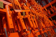 Number of tiny orange traditional Japanese gates (miniatures of Toriis) in the Shinto shrines Royalty Free Stock Photos