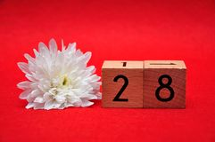 Number twenty eight with a white daisy. On a red background stock image