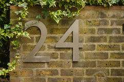 Number twenty-four on yellow brick wall. House number on an ivy-covered old yellow brick wall Royalty Free Stock Image