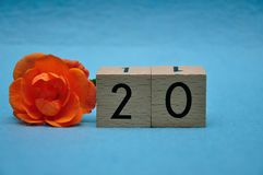 Number twenty with an orange rose stock images