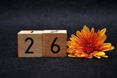 Number twenty six with an orange daisy. On a black background royalty free stock photos