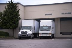 Two middle class semi trucks with box trailers stand in dock on. A number of white middle-class rigs semi trucks for the transportation of commercial cargo for Stock Photography