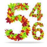 Numbers of bright  leaves Royalty Free Stock Photos