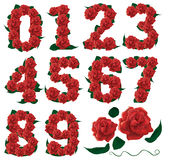 Numbers cute roses floral illustration Royalty Free Stock Images