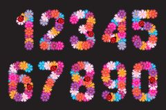 Numbers of flowers. A set. Stock Images