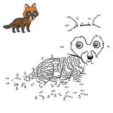 Numbers game, African civet Royalty Free Stock Photos