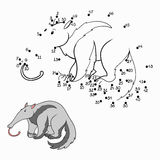 Numbers game (anteater) Royalty Free Stock Photography