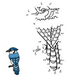Numbers game, Blue jay Royalty Free Stock Images