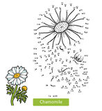 Numbers game for children, flower Chamomile. Numbers game, education dot to dot game for children, flower Chamomile Stock Photography