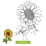 Numbers Game For Children, Flower Sunflower Royalty Free Stock Photography