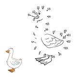 Numbers game (goose) Stock Photo