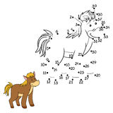 Numbers game (horse) Stock Images