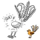 Plumage of Lyrebird stock photo. Image of bird, plumage ...