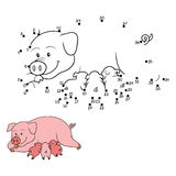 Numbers game (pig mommy with piget) Stock Photos