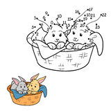Numbers game (rabbit in the basket) Royalty Free Stock Images