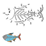 Numbers game (x-ray fish). Numbers game for children (x-ray fish Stock Images