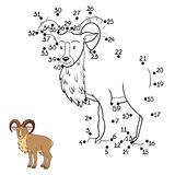 Numbers game (urial) Stock Image