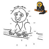 Numbers game, White-faced saki. Numbers game, education dot to dot game for children, White-faced saki Royalty Free Stock Image