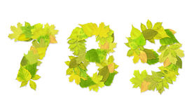 Numbers with a green leaves. Set 3 Royalty Free Stock Image