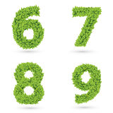 Numbers of green leaves collection. vector illustration