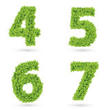 Numbers of green leaves collection. stock illustration