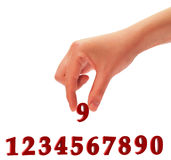 Numbers and a hand. Hand which holds figure nine. The image is presented on a white background Stock Images
