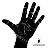 Numbers hand signs set, number five, detailed black and white ve Stock Photo