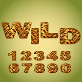 Numbers imitating tiger fur. Vector Royalty Free Stock Photo