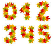 Numbers  made from autumn leaves Stock Photos