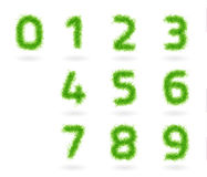 Vector set grass numbers. Numbers made of different lines like fluffy grass. EPS 10 vector ilusstration. Used effect transparency layers of strokes Stock Image