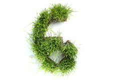 Numbers made of grass Royalty Free Stock Photo