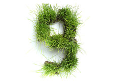 Numbers made of grass Stock Image