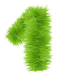 Numbers made of grass - 1 Stock Photo