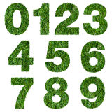 Numbers made of green grass Stock Image