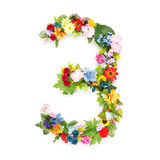 Numbers made of leaves & flowers Stock Images